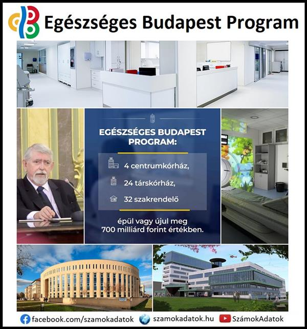 The Healthy Budapest Program